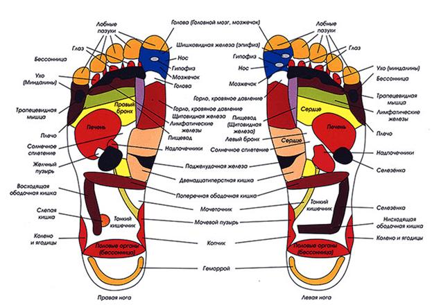 схема тайского массажа стоп