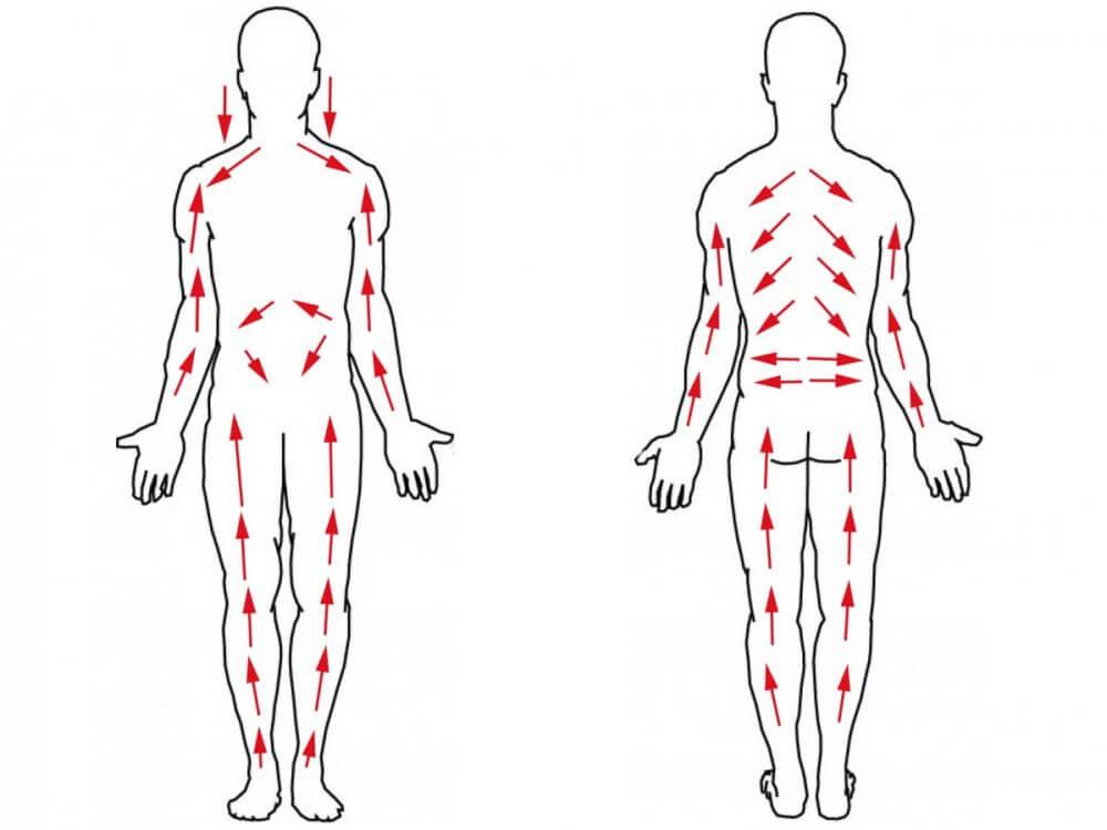Техника лимфодренажного массажа живота в домашних условиях
